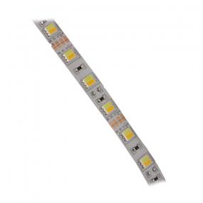 LED traka bela topla/hladna, 60xLED5050, 1m